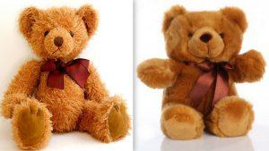 teddyyes